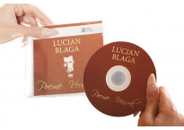 Inscriptionare si personalizare CD/DVD